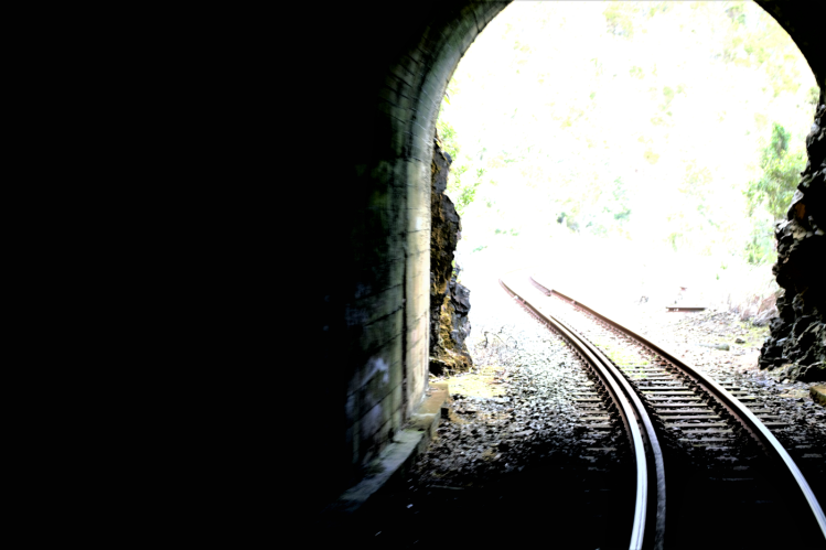 George rail