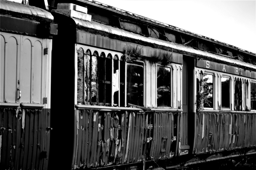 Abandoned train in George